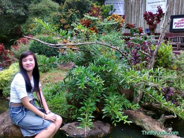 malagos garden resort, davao, park, bird show, interactive bird show