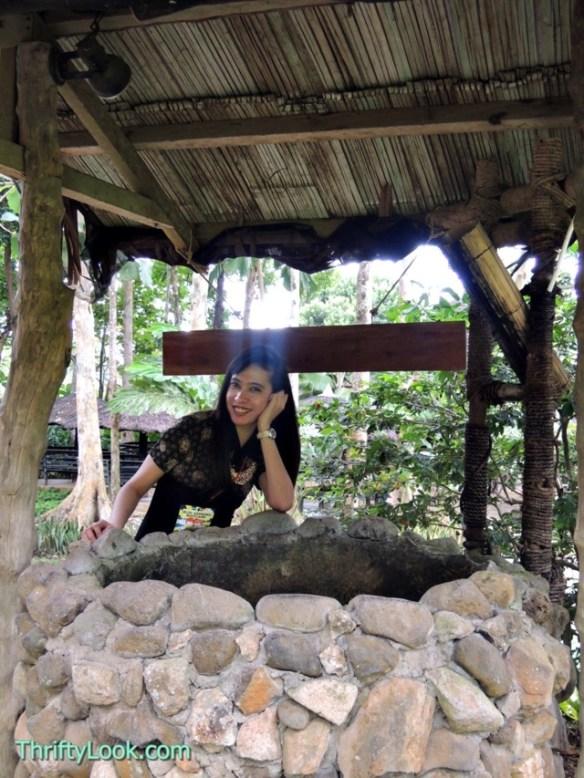 malagos garden resort, davao, park, wishing well, well, garden, drop coin, make a wish