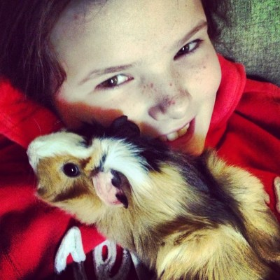 cute_pets_for_kids