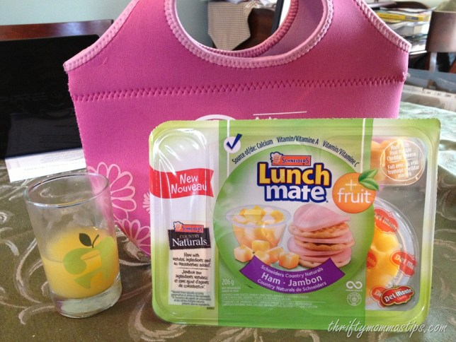 healthy_lunches_for_school