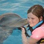 Dolphin Discovery #pvpresstrip #wordlesswednesday
