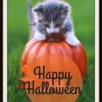 Happy Halloween #WordlessWednesday