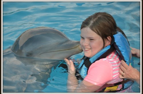 best-dolphin-excursions-Mexico