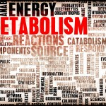 Boost Your Metabolism in 4 Easy Steps