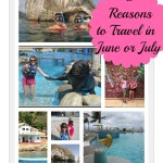 5 Reasons For Travelling in June and July #travel