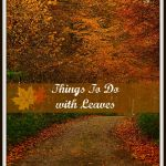 Fun Family Leaf Crafts and Activities