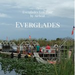 Eco-Tour by Airboat in the Florida Everglades #Travel