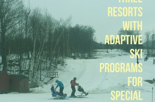 adaptive ski