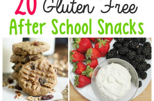 gluten free after school snacks