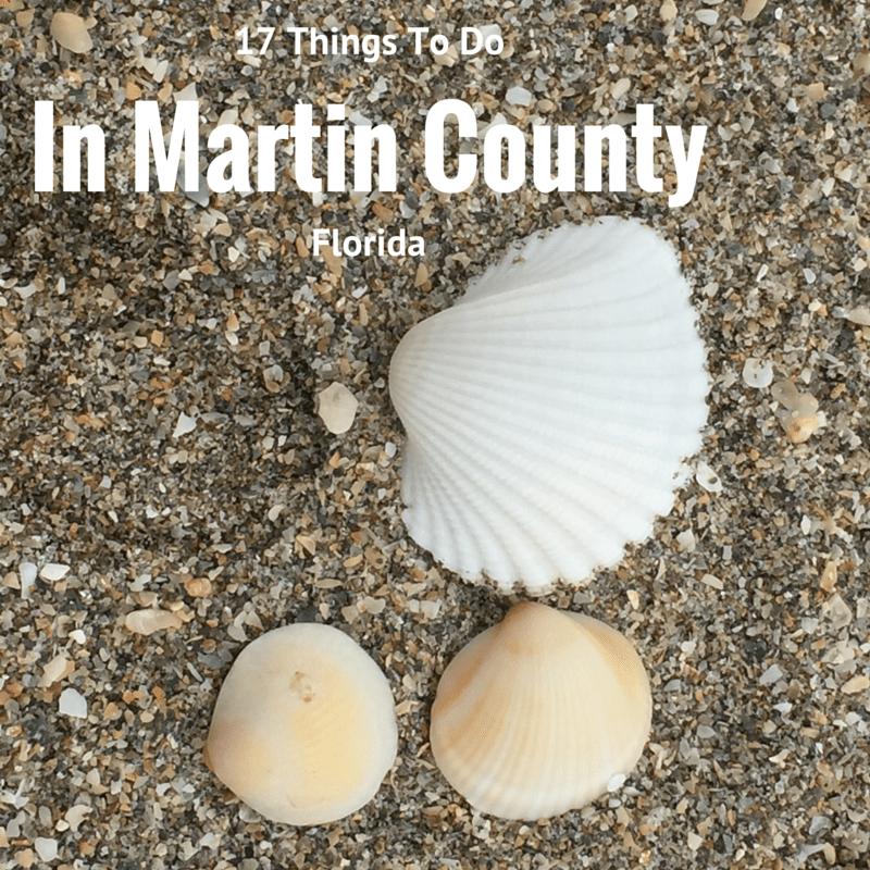 Martin_county