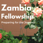 Zambia Fellowship – Preparing For The Journey #VaccinesWork #travel
