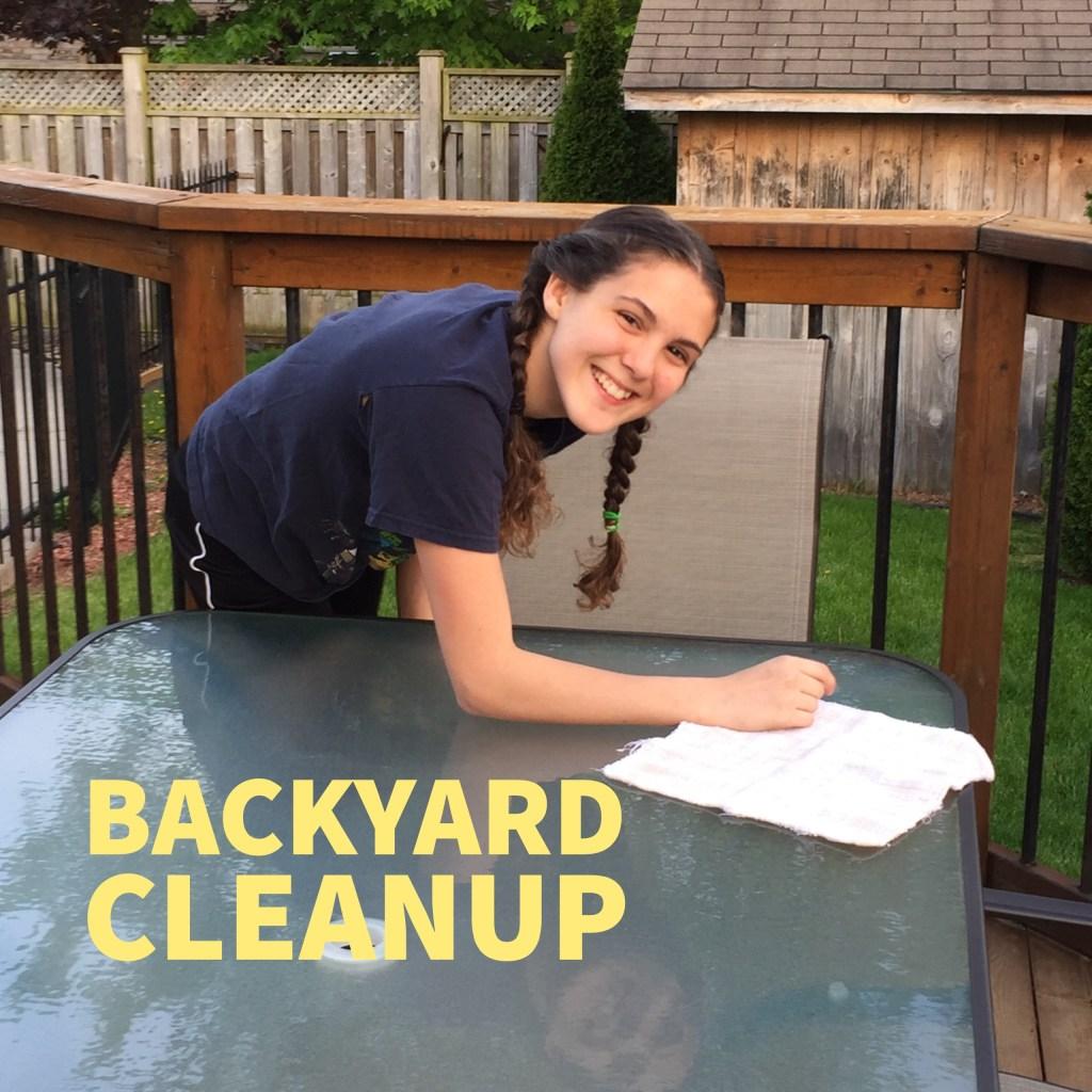 backyard_cleanup