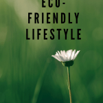 9 Easy Ways to Live a More Eco-Friendly Lifestyle