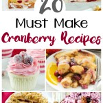 20 Amazing Cranberry Recipes To Make You Swoon