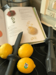 homemade_lemon_sorbet_lemons_cookbook