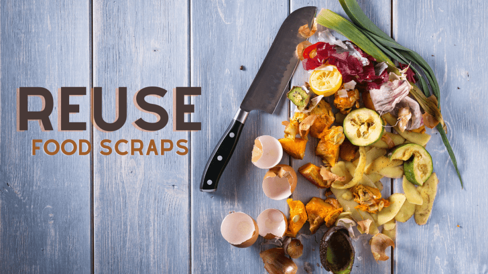 reuse_food_scraps