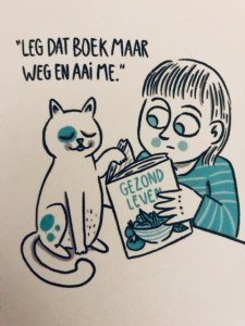 Crazy Cat Lady-boek