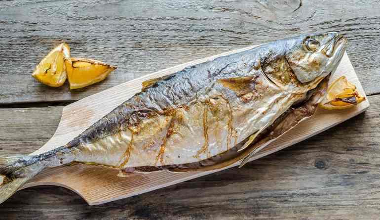 fatty fish
