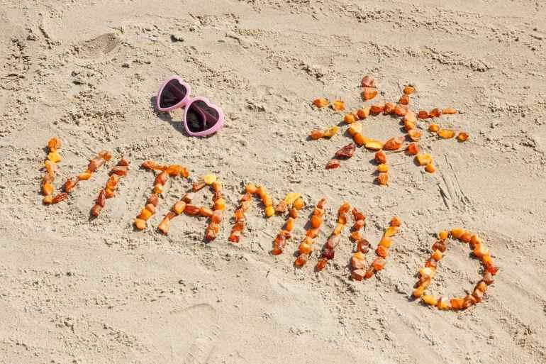 The Best Vitamin D Food Sources For Vegans