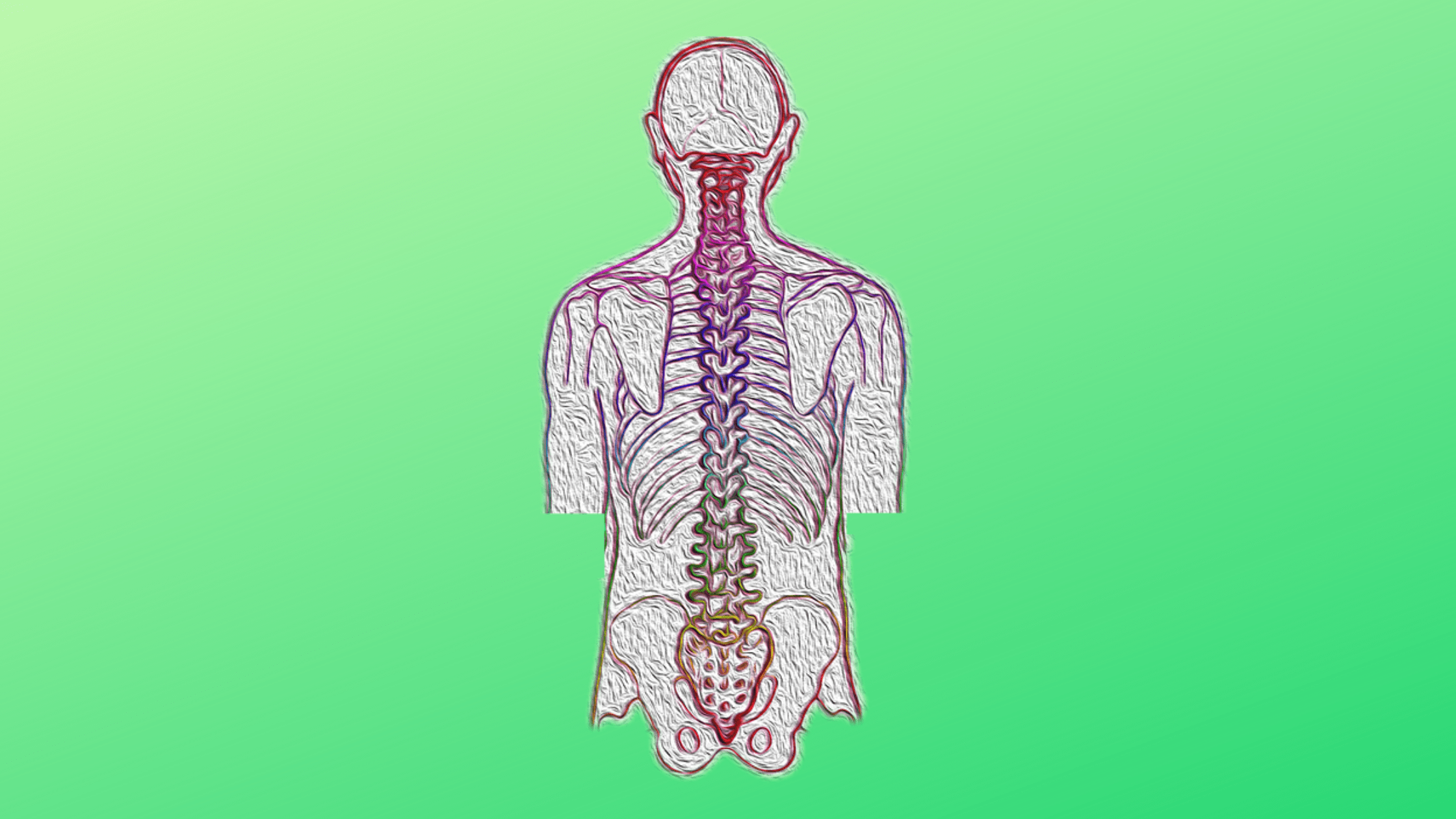 Illustration of human spine on green gradient background.