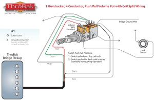 ThroBak Humbucker Coil Split Diagram  ThroBak