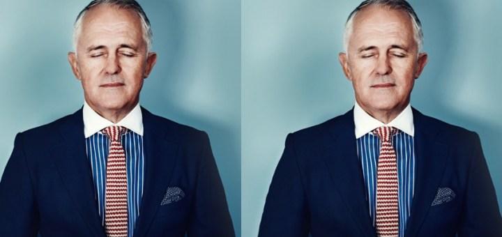 turnbull australian politics throwcase