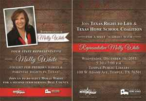 Meet Home School Mom and State Representative Molly White