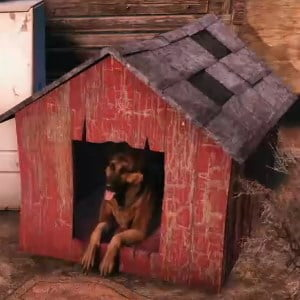 Dress up Dogmeat, or build him a doghouse