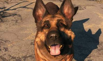How to dress up Dogmeat in Fallout 4