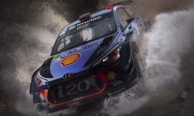 WRC 7 - art