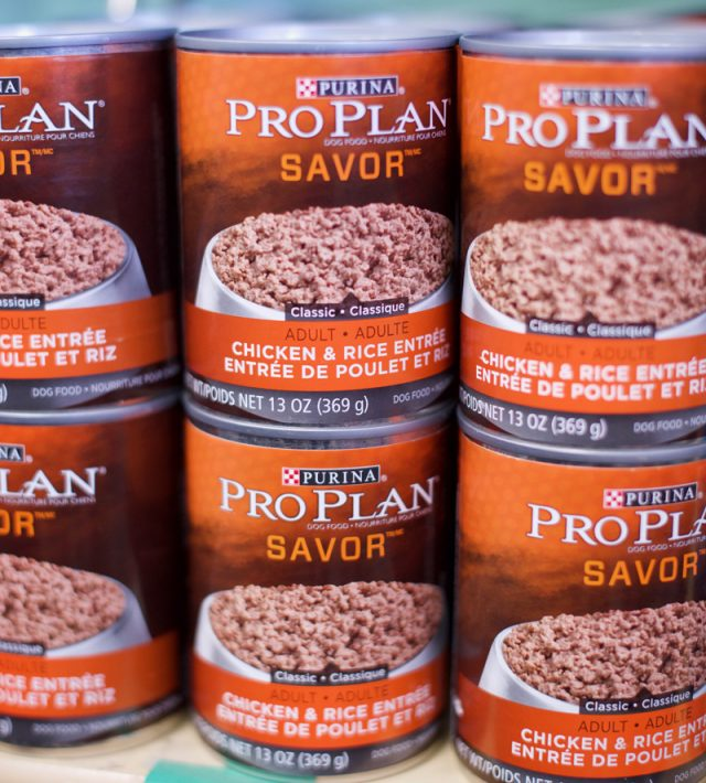 Pro Plan canned food