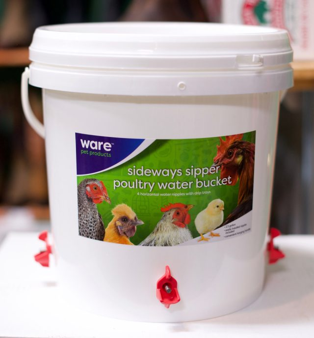 The Sideways Sipper Poultry Water Bucket