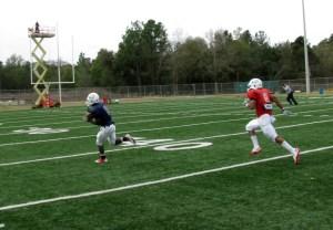 Bryant Lavender Touchdown