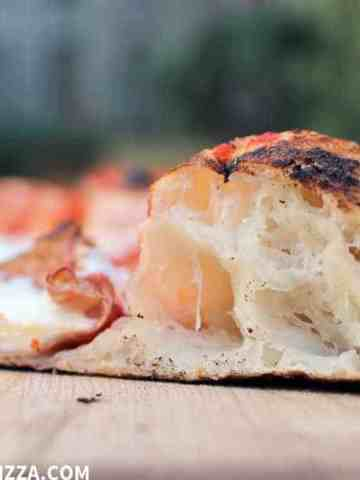 Neapolitan Pizza Dough outdoor pizza oven