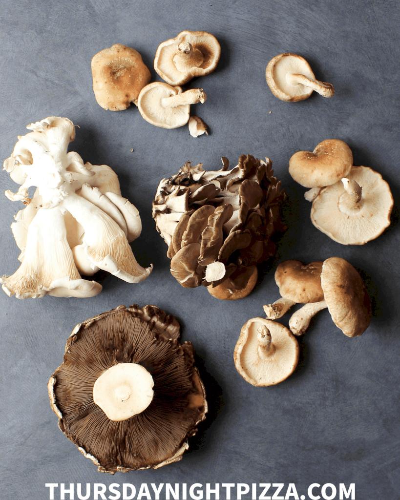 mixed fresh mushrooms