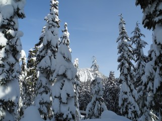 White Pass Dec 2012 018