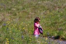 Mima Mounds Olympia Washington (29)