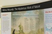 Mima Mounds Olympia Washington (9)