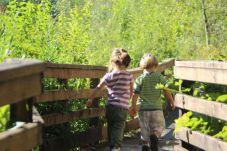 McLane Creek Nature Trail (7)