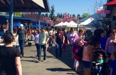 Olympia Farmers Market Opening Day