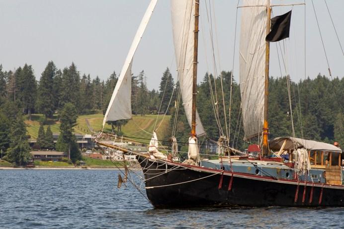 Hope Island Washignton Olympia Shelton (5)
