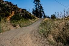 Rock Candy Mountain Capitol Forest Dirt Biking 12