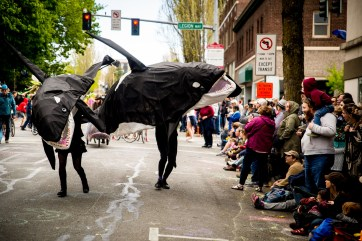 4.27.19 Procession of the Species-34