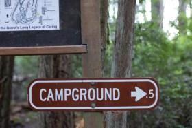 Hope Island Camping Washington State_32