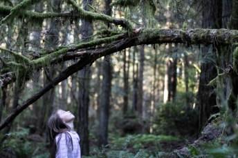 Hope Island Camping Washington State_38