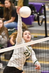 Timberline North Thurston Girl Volleyball 3002