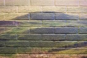 Detalje fra vægdekoration