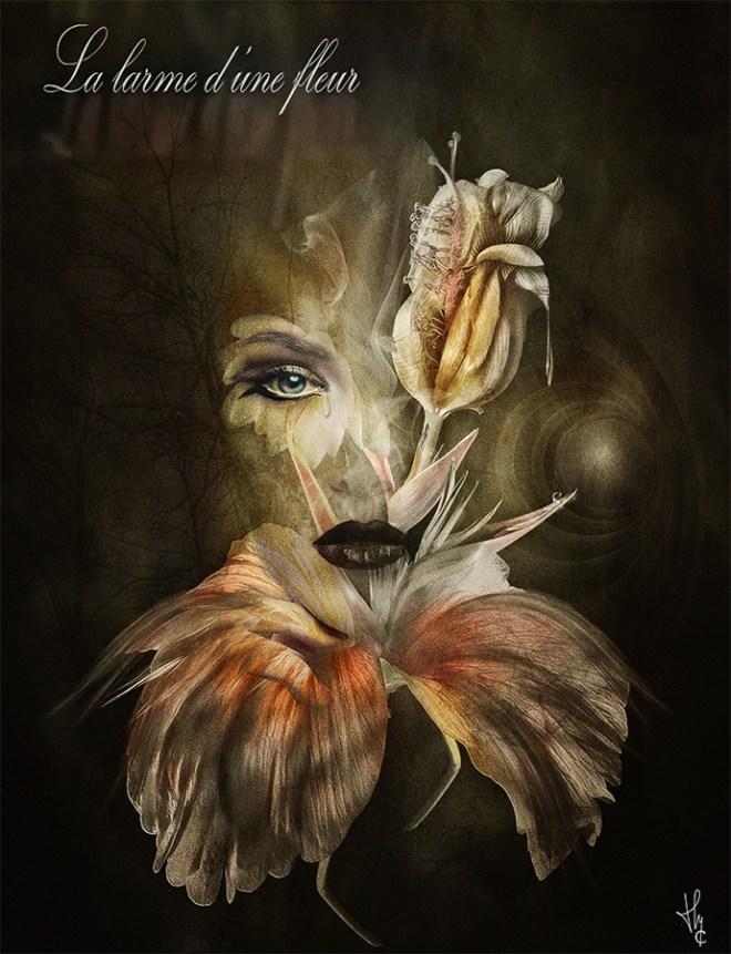 La-larme-d'une-fleur