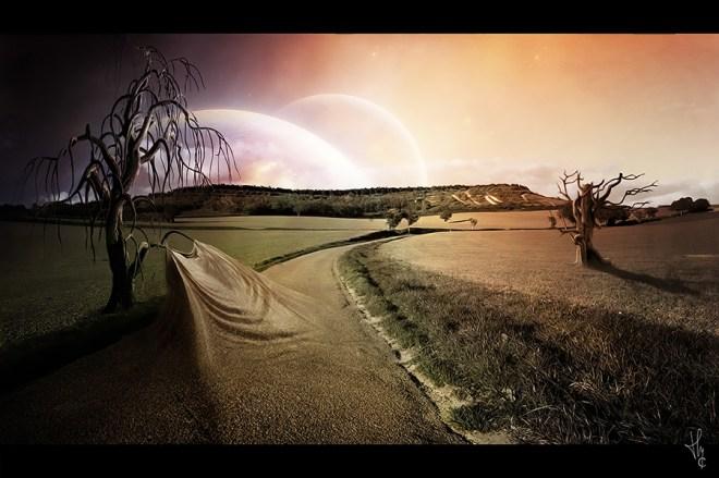 L'arbre-et-la-route