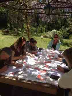 Medicinal Plant Herbal Medicine Workshop